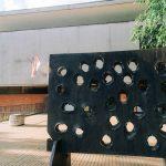 Zavirite u najznačajnije ustanove kulture u Novom Sadu