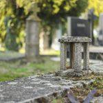 Tihi svedoci istorije i čuvari uspomena: Priče koje kriju novosadska groblja