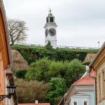 Dan Evrope u Novom Sadu: Slavimo kulturni napredak i jedinstvo u različitosti